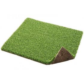 PG 2 Putting Green
